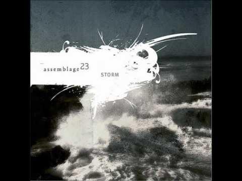 Assemblage 23 - Let the Wind Erase Me (lyrics)