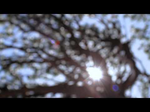 Soulsavers - 'Take Me Back Home'
