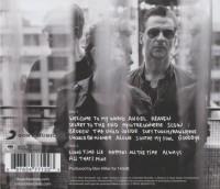 Delta Machine - Back-Cover