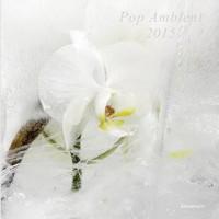 pop_ambient15