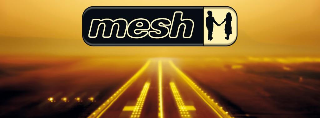 mesh_2016