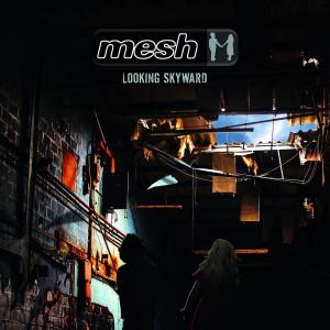 Mesh: Looking Skyward
